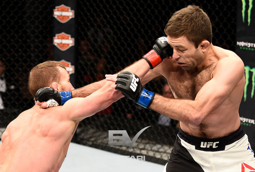 LAS VEGAS, NV - DECEMBER 03:  (L-R) Gray Maynard punches Ryan Hall in their featherweight bout during The Ultimate Fighter Finale event inside the Pearl concert theater at the Palms Resort & Casino on December 3, 2016 in Las Vegas, Nevada. (Photo by Jeff Bottari/Zuffa LLC/Zuffa LLC via Getty Images)