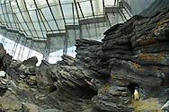 PRT, Portugal: Oceanario de Lisboa, das zweitgroesste seiner Art weltweit, Lebensraum Antarktis mit Magellan Pinguinen (Spheniscus maggelanicus), Lissabon, Lissabon | PRT, Portugal: Oceanario de Lisboa, the second largest world wide, habitat Antarctic with Magellanic Penguins (Spheniscus Magellanicus), Lisbon, Lisbon |
