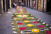 Pathway mat of flowers in the street to celebrate Corpus Christ, Girona, Catalonia, Spain