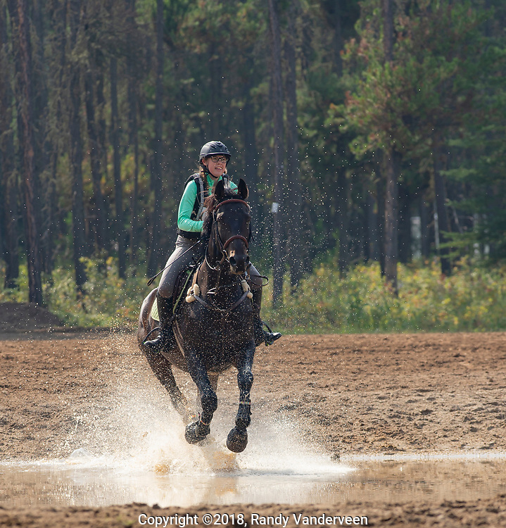 Photo Randy Vanderveen<br /> County of Grande Prairie, Alberta<br /> 2018-09-02<br /> Katelynn Lloyd and WinSum CheatSum splash through a water obstacle during the cross country event at the South Peace Horse Club's eventing at Evergreen Park, Sunday. The two-day annual equestrian competition had riders and mounts competing in dressage, stadium (show jumping) and cross country.