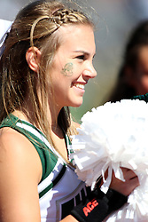 08 September 2012:  Titan Cheerleader during an NCAA division 3 football game between the Alma Scots and the Illinois Wesleyan Titans which the Titans won 53 - 7 in Tucci Stadium on Wilder Field, Bloomington IL
