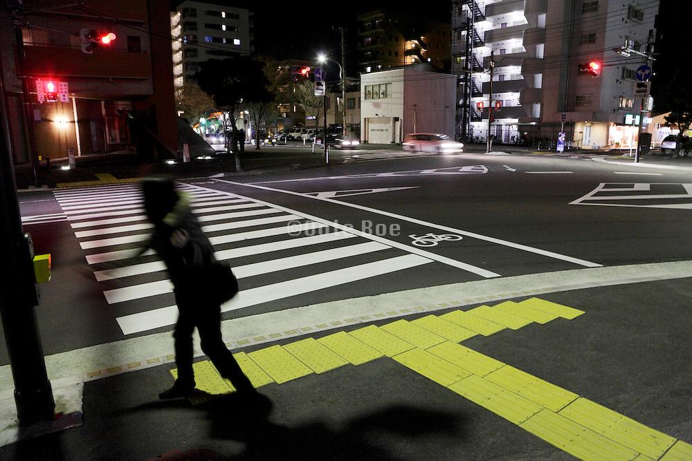 person at zebra crossing Japan