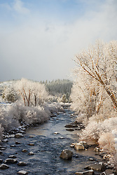 """""""Snowy Truckee River 4"""" - Photograph of a snowy Truckee River shot in Downtown Truckee, California."""