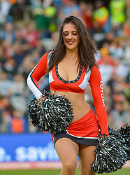 Free State Cheetah Cheerleader during the Currie Cup 1st division match between the The Free State Cheetahs and the Blue Bulls held at Toyota Stadium (Free State Stadium), Bloemfontein, South Africa on the 13th August 2016<br /> <br /> Photo by:   Frikkie Kapp / Real Time Images