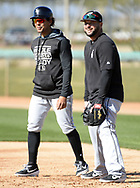 GLENDALE, ARIZONA - FEBRUARY 19: Jon Jay #45 (L) and Yonder Alonso #17 of the Chicago White Sox look on during spring training workouts on February 19, 2019 at Camelback Ranch in Glendale Arizona.  (Photo by Ron Vesely). Subject:   Jon Jay; Yonder Alonso