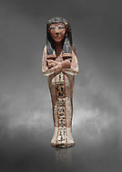 Ancient Egyptian shabtis doll, lwood, New Kingdom, 18th Dynasty, (1538-1040 BC), Deir el Medina. Egyptian Museum, Turin. Grey background. <br /> <br /> shabti figures began to occur in Middle Kingdom tombs with a twofold nature: on <br /> the one hand, they were meant to be images of their owners, representatives of the deceased in the realm of the Lord of Eternity. <br /> On the other hand, they were also considered to be servants of the deceased, taking the role of the servant statues. The complex <br /> nature of the shabti figure as a substitute of both the owner and his or her servants remains unaltered during the New Kingdom .<br /> <br /> If you prefer to buy from our ALAMY PHOTO LIBRARY  Collection visit : https://www.alamy.com/portfolio/paul-williams-funkystock/ancient-egyptian-art-artefacts.html  . Type -   Turin   - into the LOWER SEARCH WITHIN GALLERY box. Refine search by adding background colour, subject etc<br /> <br /> Visit our ANCIENT WORLD PHOTO COLLECTIONS for more photos to download or buy as wall art prints https://funkystock.photoshelter.com/gallery-collection/Ancient-World-Art-Antiquities-Historic-Sites-Pictures-Images-of/C00006u26yqSkDOM