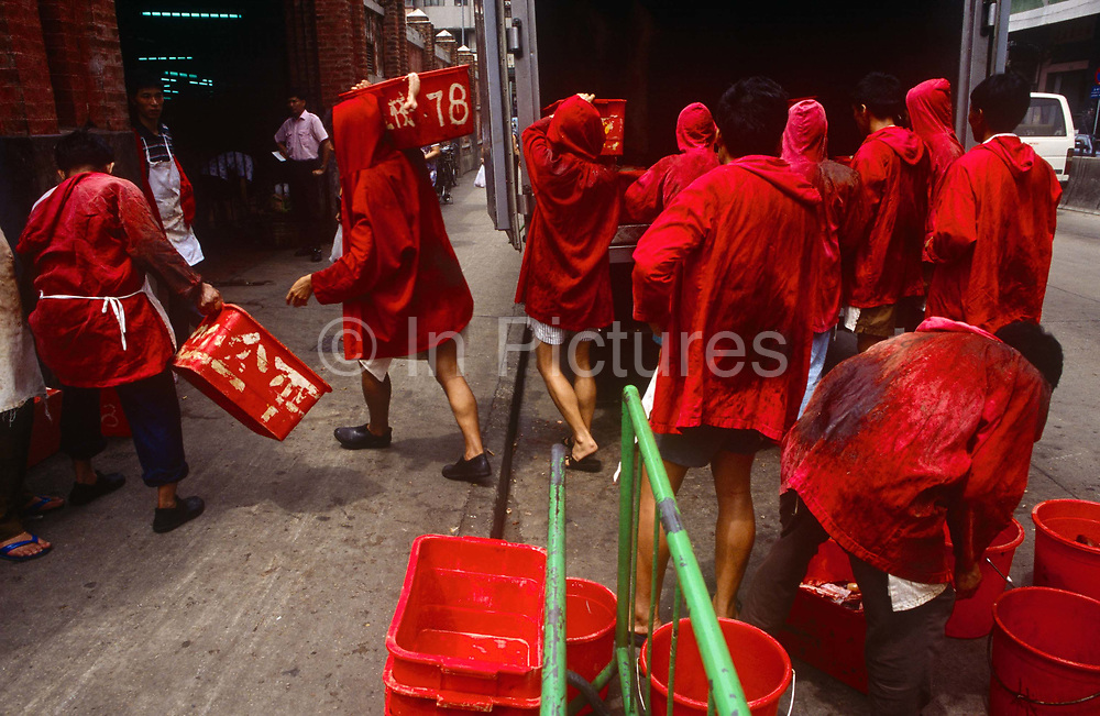 A group of red uniformed meat market traders manhandle joints of pork from the back of a meat wagon at Macaus main meat market, on the Rua Sul do Mercado de Sao Domingos, on 10th August 1994, in Macau, China. The market is just off the Avenida de Almeida Ribeiro, in Central Macau. The men have on hooded red tunics that hide the bloodstains of dead animal carcasses, a very practical choice of colour.  The Macau Special Administrative Region is one of the two special administrative regions of the Peoples Republic of China PRC, along with Hong Kong. Administered by Portugal until 1999, it was the oldest European colony in China, dating back to the 16th century. The administrative power over Macau was transferred to the Peoples Republic of China PRC in 1999, 2 years after Hong Kongs own handover.