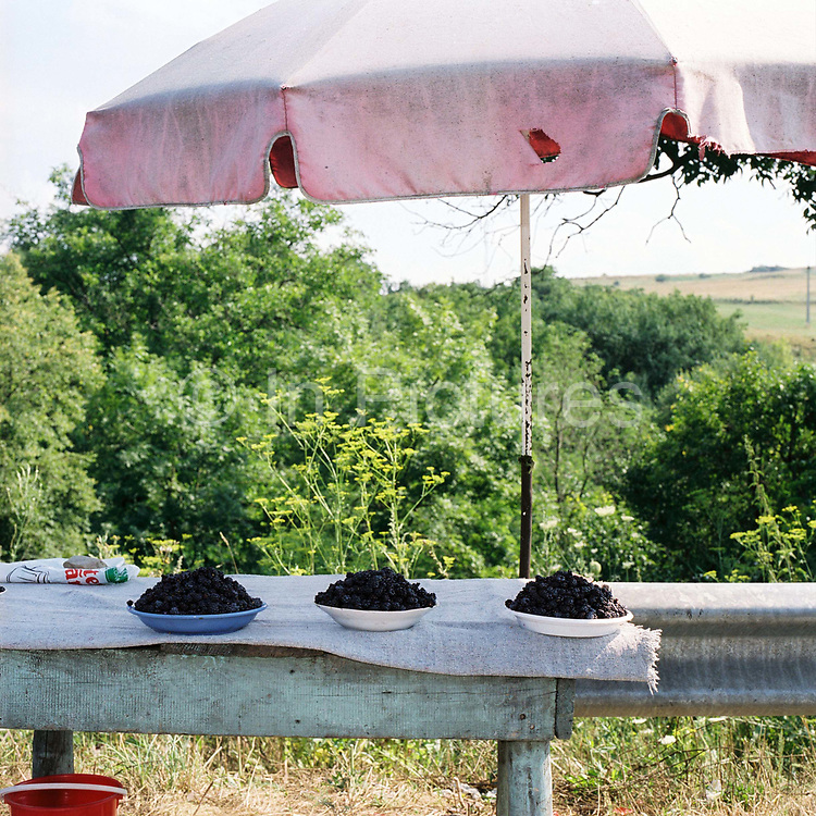 A roadside stall selling blackberries gathered from the wild in the Carpathian Mountains, Romania. Foraging for wild food is an important part of the subsistence farmers way of life and they know where to find different items in the fields and forests around the village.