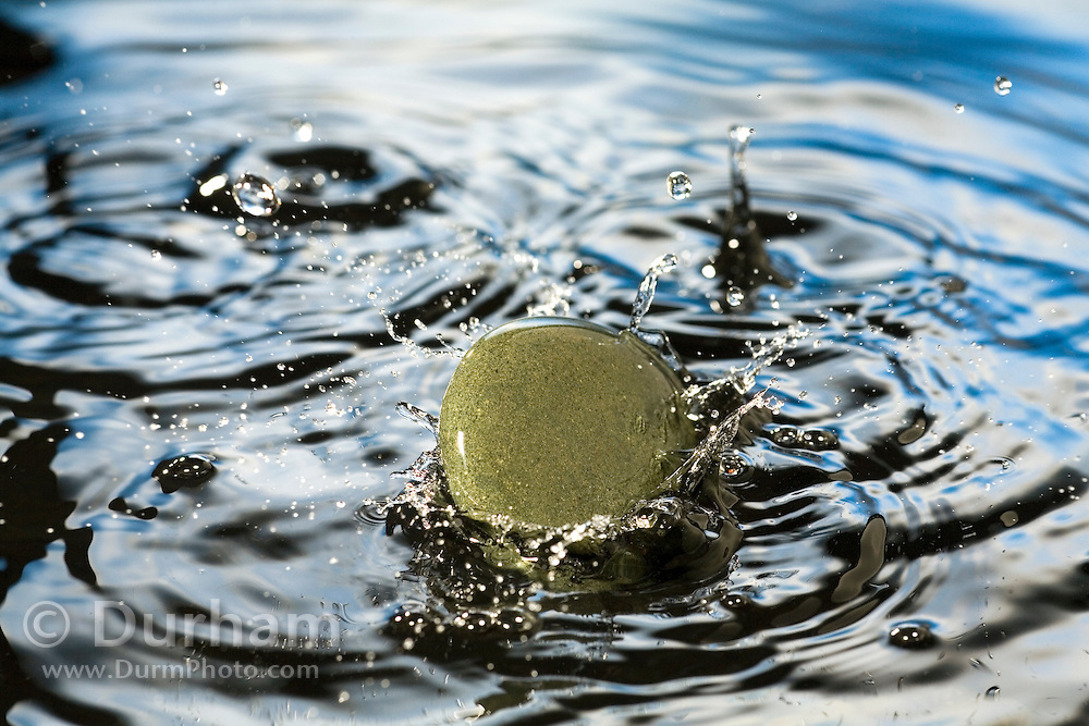A rock impacts the water's surface.