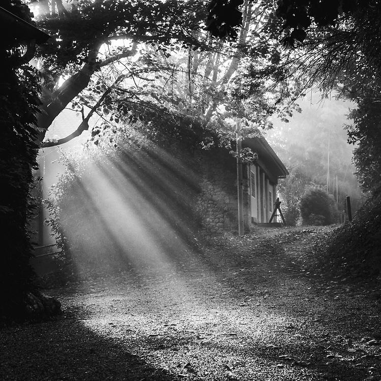Shadows of Aquitaine. Sunbeams at Quatre Vents