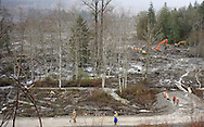 Rescue workers are dwarfed by the massive mudslide in Oso, Washington March 30, 2014. Local churches offered prayers on Sunday for the victims of last week's devastating mudslide in Washington state and words of solace for grieving families and friends, many of whom are still waiting for news of missing loved ones.  REUTERS/Rick Wilking (UNITED STATES)