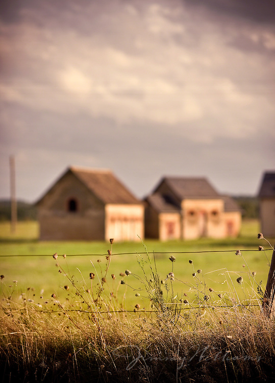 Various farm buildings sit in a green pasture as viewed from outside of the field's fence