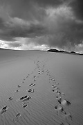 Foot steps climb the dunes of Great Sand Dunes National Park, Colorado. Full color image also available upon request,