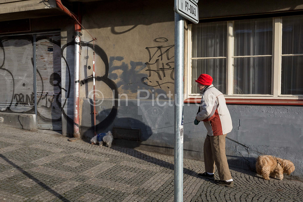 A local lady takes her morning walk with her dogs along <br /> Kostelni street in Holesovice district, Prague 7, on 20th March, 2018, in Prague, the Czech Republic.