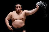 20080608 - Grand Sumo Tournament