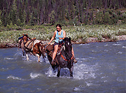 """Amanda Cornell riding """"Shorty"""" and leading """"Scout"""" and """"Annie"""" across ford of Caribou Creek, Talkeetna Mountains, Alaska."""