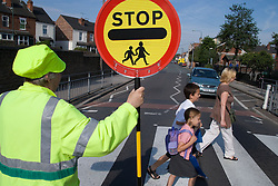 Lollypop lady helping family cross the zebra crossing,