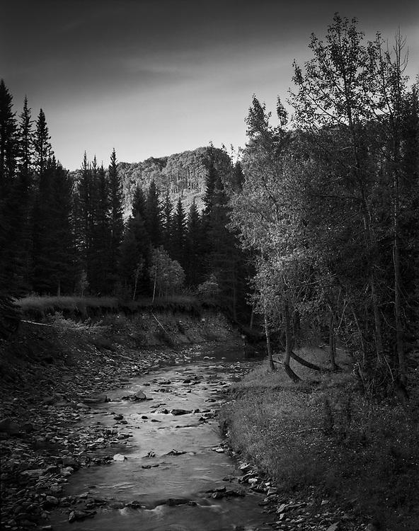 Fish Creek no2