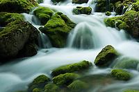River Zadnjica, cascades, moss-grown stones in water<br /> Triglav National Park, Slovenia<br /> July 2009