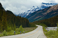 The Icefields Parkway stretches 230 km (142 miles) between Lake Louise and the town of Jasper and travels through the heart of the Canadian Rockies.  The highway parallels the Main Ranges of the Canadian Rockies within Banff and Jasper National Parks.  The peaks of the mountains visible from the highway can reach an altitude of 3300 meters (11,000 feet).  Many glacially fed streams and lakes can be seen and visited along the way.