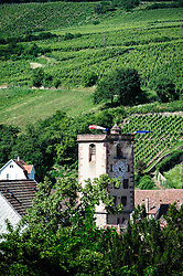 Church tower in the village of Ribeauville, Alsace, France surrounded by vineyards in the foothills of the Vosges Mountains.<br /> <br /> (c) Andrew Wilson | Edinburgh Elite media