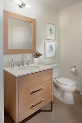 1700_Clarendon Arlington, VA The Gaslight 1700_Clarendon Arlington, VA Master Bathroom