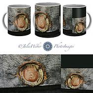 Coffee Mug Showcase 41 - Shop here: https://2-julie-weber.pixels.com/products/afterlife-julie-weber-coffee-mug.html