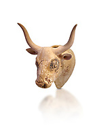 Minoan  bull's head rhython libation vessel, Gournia 1600-1450 BC; Heraklion Archaeological  Museum, white background. .<br /> <br /> If you prefer to buy from our ALAMY PHOTO LIBRARY  Collection visit : https://www.alamy.com/portfolio/paul-williams-funkystock/minoan-art-artefacts.html . Type -   Heraklion   - into the LOWER SEARCH WITHIN GALLERY box. Refine search by adding background colour, place, museum etc<br /> <br /> Visit our MINOAN ART PHOTO COLLECTIONS for more photos to download  as wall art prints https://funkystock.photoshelter.com/gallery-collection/Ancient-Minoans-Art-Artefacts-Antiquities-Historic-Places-Pictures-Images-of/C0000ricT2SU_M9w