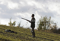 Copt Hall Farm Shoot  8th November 2012