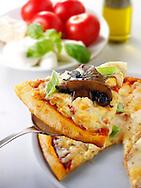 Italian mushroom and cheese Pizza slice photo. Funky Stock pizzas photos