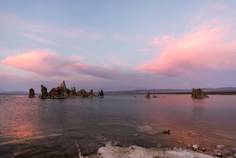 Evening light is reflected on the waters of Mono Lake from South Tufa