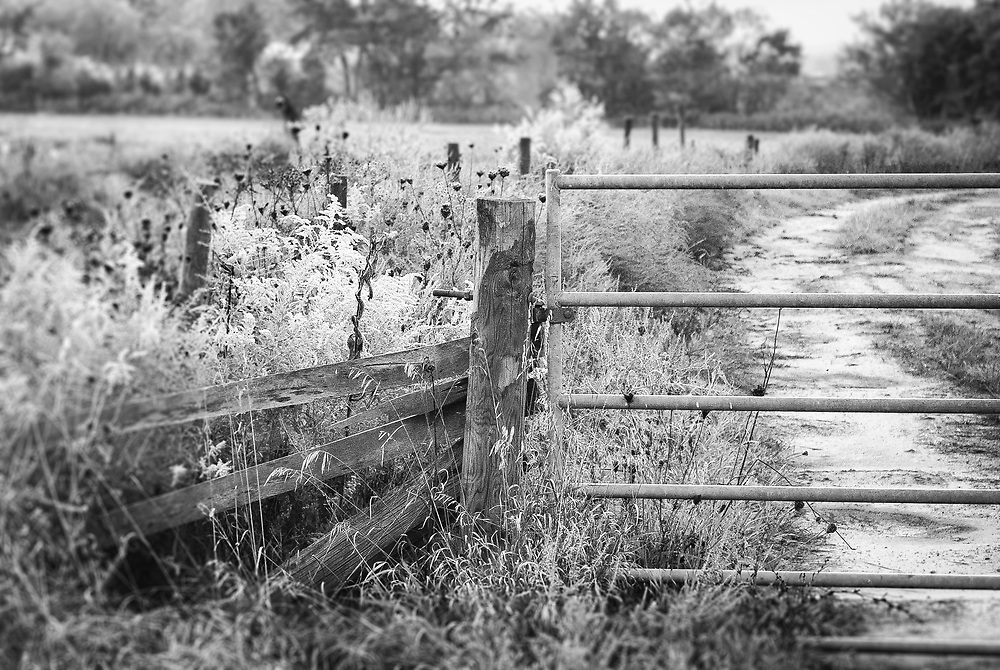 Traveling on West Virginia backroads can lead you to the most stunning views.  This farm fence attached to the broken down wooden fence line created the perfect textural pallet for this shot.