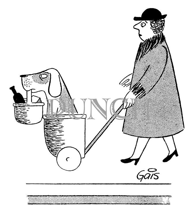 (A woman pushes a shopping trolley carrying a dog carrying a shopping basket)
