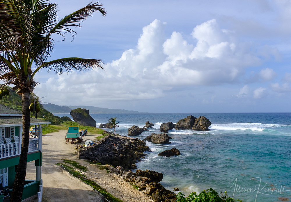 View of the rugged Northern coastline of Barbados