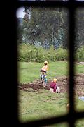 Women farming the land near to Parc National Des Volcans, Rwanda