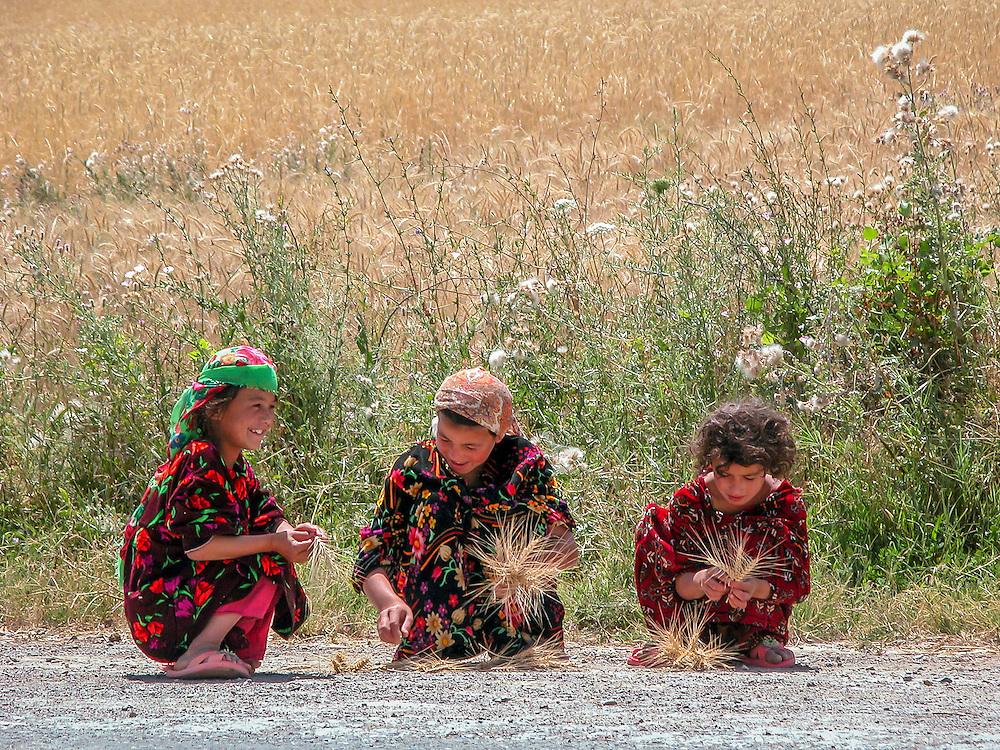 Portrait of young Tajik girls making posies of ripe wheat