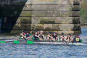 Mortlake/Chiswick, GREATER LONDON. United Kingdom. Milton Keynes Rowing Club, <br /> W.MasC.8+,  competing at the  2017 Vesta Veterans Head of the River Race, The Championship Course, Putney to Mortlake on the River Thames.<br /> <br /> <br /> Sunday  26/03/2017<br /> <br /> [Mandatory Credit; Peter SPURRIER/Intersport Images]