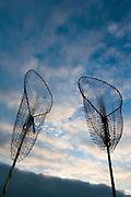 San Francisco California USA, California the bay of SF at dusk, fishing nets ready to be cast October 2006