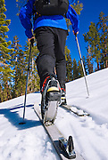 Backcountry skier near Glacier Point, Yosemite National Park, California