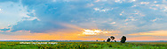 63893-03913 Sunrise over prairie Prairie Ridge State Natural Area  Marion Co. IL