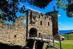 The main entrance to St Andrews Castle, St Andrews, Fife, Scotland<br /> <br /> (c) Andrew Wilson | Edinburgh Elite media