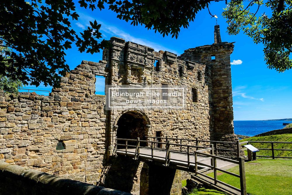 The main entrance to St Andrews Castle, St Andrews, Fife, Scotland<br /> <br /> (c) Andrew Wilson   Edinburgh Elite media