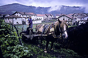 A farmer unloads natural fertilizer into a field, Barroeta village, Baztan, Basque country, Spain.