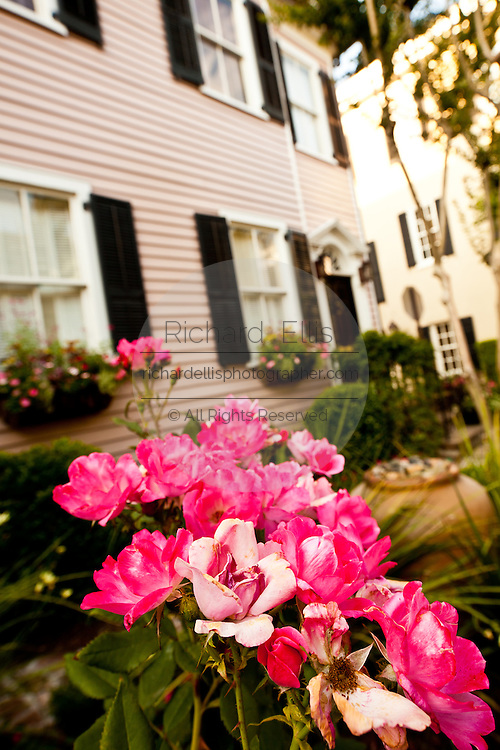 Roses outside a French quarter historic house Charleston, SC.