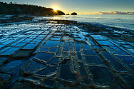 Australia, Tasmania, Eaglehawk Neck, Tessellated Pavement,