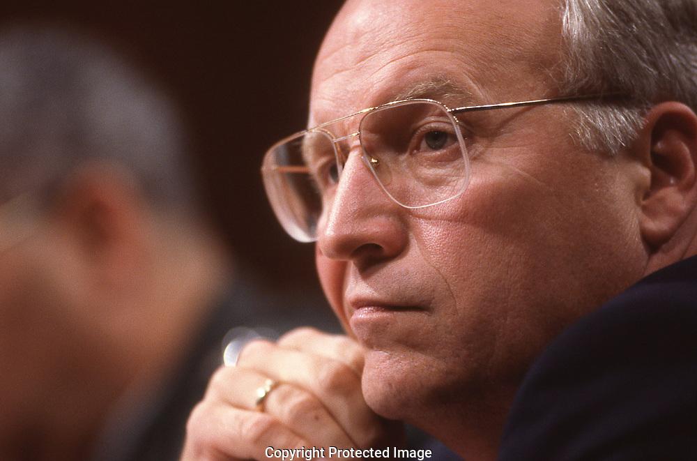Secretary of Defense Dick Cheney,<br /><br />Photograph ny Dennis Brack. bb78