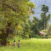 Boys playing in a rice field in Vang Vieng.