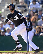 GLENDALE, ARIZONA - FEBRUARY 23:  D.J. Peterson #85 of the Chicago White Sox hits a home run against the Los Angeles Dodgers on February 23, 2019 at Camelback Ranch in Glendale Arizona.  (Photo by Ron Vesely)  Subject:  D.J. Peterson