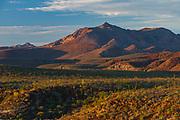 Telephoto view of the El Vizcaino Desert Biosphere Reserve, evening light, February, San Ignacio, Baja, Mexico