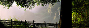 Victoria Falls tree and fence